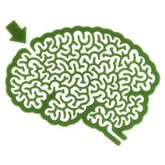 Irrgarten Gehirn