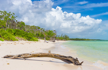 Virgin tropical beach at Coco Key (Cayo Coco) in Cuba