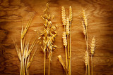 Different types of cereals on old wood background
