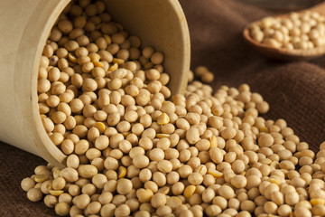 Organic Dry Soy Beans