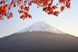 Mt. Fuji in the Autumn Season