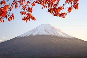 Mt. Fuji in the Autumn Season