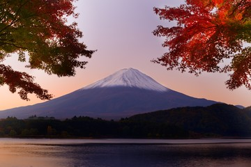 Mt. Fuji at Dawn in the Autumn