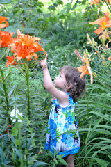 The little girl points a finger at garden lilies