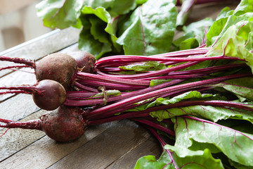 bunch of fresh beets with leaves on the boards