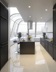 Penthouse Kitchen (focus)