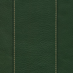 Green Leather with Seams and Edges
