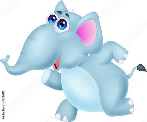Cute elephant running
