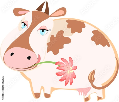 Happy cattle with a flower