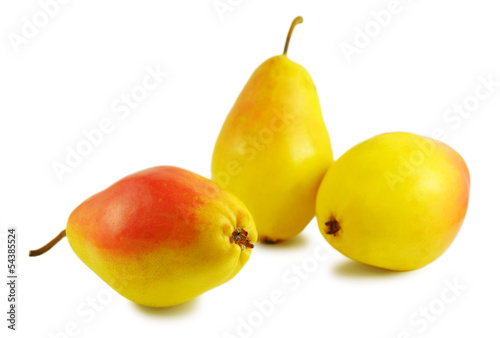Three yellow pears