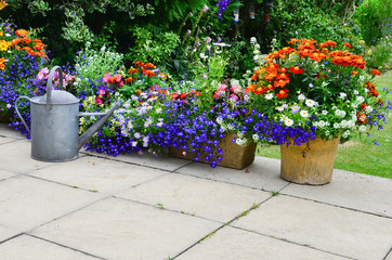 Patio flower display