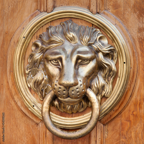 Door knocker, handle -  lion head