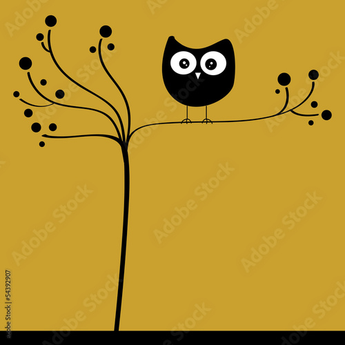 owl in tree