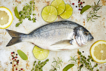 Fresh sea bream with lemon, lime and herbs