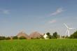 Farmhouses in Dutch landscape
