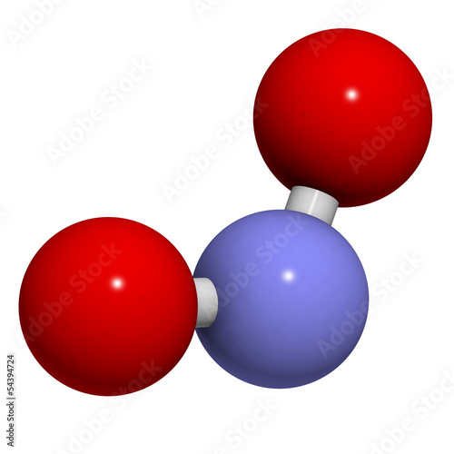 Nitrite (NO2-) anion.