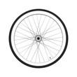 Bicycle wheel. Fixed gear