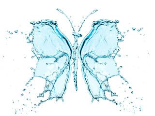 Butterfly splashing water