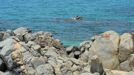 Rocky coast in Corsica, France