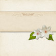 Vintage background design with flowers