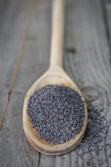 Spoon of Poppy Seeds