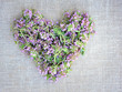 Heart from Thyme flowers on sackcloth