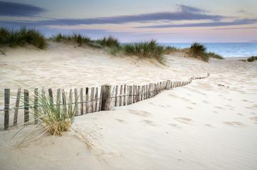 Grassy sand dunes landscape at sunrise