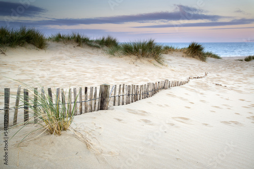 Grassy sand dunes landscape at sunrise © veneratio