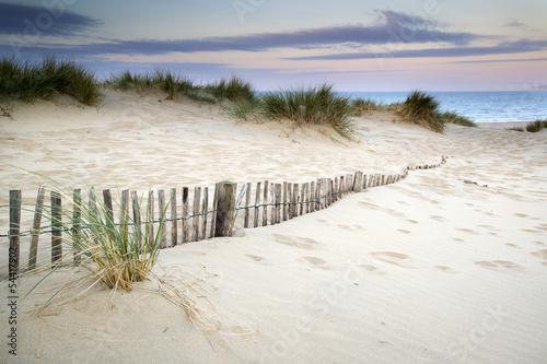 Grassy sand dunes landscape at sunrise © veneratio