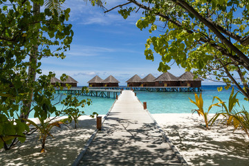 Scenery of Resort Island,Maldives