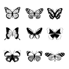 Vector black white butterfly set