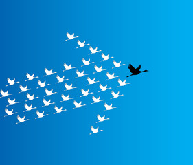 Leadership Synergy Concept  Swans flying - deep blue sky - arrow