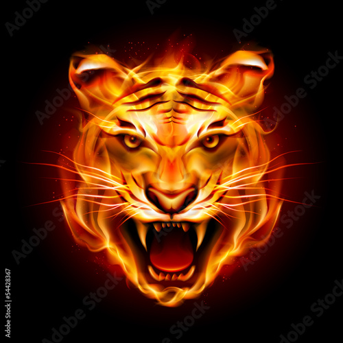 Head of a tiger in flame