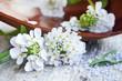 Spa white flowers and spa sea salt