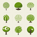 Tree. Collection of design elements. Vector logo templates set
