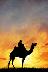 Man on camel at sunset