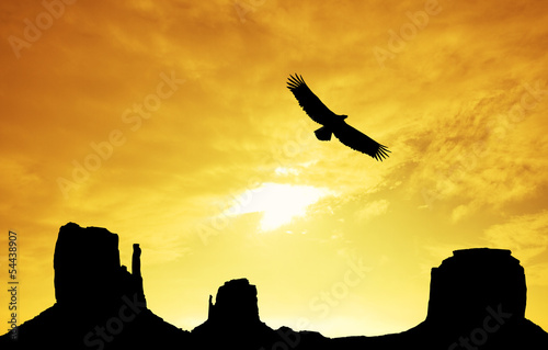 eagle in Monument Valley