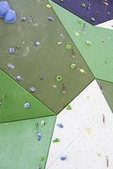 Professional climbing wall