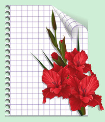 Page of a notebook with gladiolus. Vector illustration