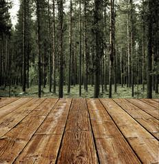 Terrasse am Wald