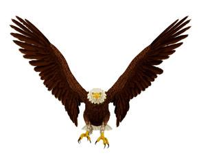 wide eagle frontal landing