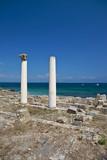 Corinthian columns at Tharros. poster
