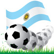 Flag of Argentina with ball vector