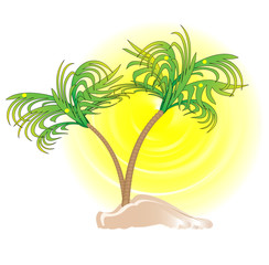 palms, sun and island illustration