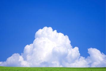 草原と夏雲