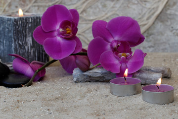 Orchidee mit Teelichtern