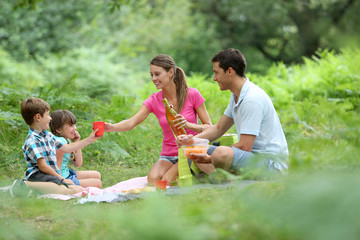 Family picnic time in countryside