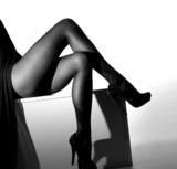 Black and white photo of sexy female legs in stockings - 54468994