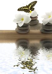 concept détente : bambou, galets, papillon, fleur