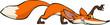 Crouching fox